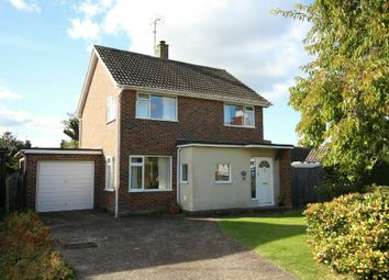 Thumbnail 3 bed detached house for sale in Blunts Way, Horsham