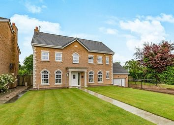 Thumbnail 6 bed detached house for sale in Gillyflower Court, Leyland