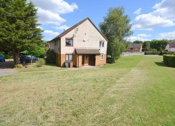 1 bed terraced house for sale in Swinford Hollow, Little Billing, Northampton, Northamptonshire NN3