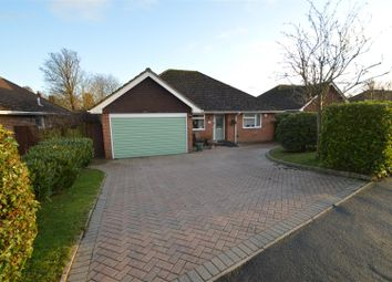 3 bed detached bungalow for sale in Thorne Crescent, Bexhill-On-Sea TN39