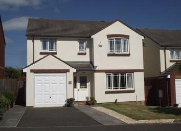 Thumbnail Property for sale in Torquay, Devon