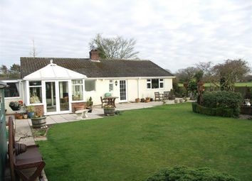 Thumbnail 3 bed bungalow for sale in Hickling, Norwich, Norfolk