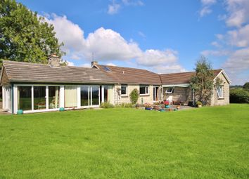 Thumbnail 4 bed bungalow for sale in Shire Lane, Lyme Regis