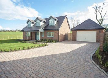 Thumbnail 4 bed detached house for sale in Long Meadow, Long Lane, Toddington