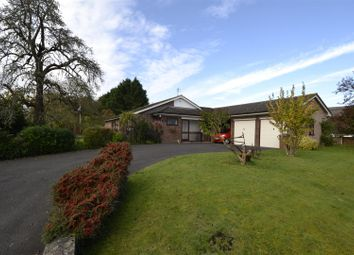 Thumbnail 4 bed detached bungalow for sale in Baughton, Earls Croome, Worcester