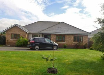 Thumbnail 3 bed bungalow for sale in Cae'r Wylan, Aberystwyth, Ceredigion