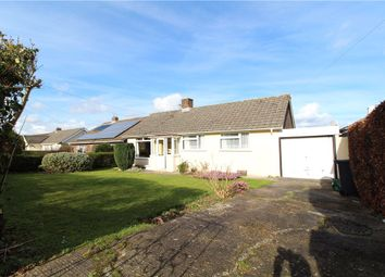 Thumbnail 2 bed detached bungalow for sale in Sector Lane, Axminster, Devon