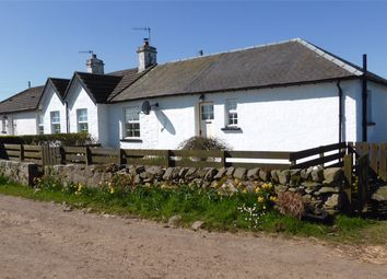 Thumbnail 2 bed semi-detached house to rent in 2 Mahaar Cottages, Kirkcolm, Stranraer, Dumfries And Galloway