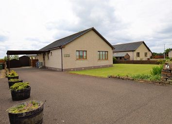 Thumbnail 2 bed bungalow for sale in Clar Innis, 11 Comlifoot Terrace, Halkirk