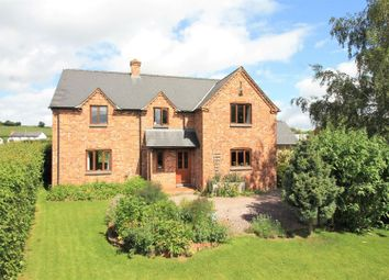 Thumbnail 4 bed detached house for sale in Auberrow, Hereford