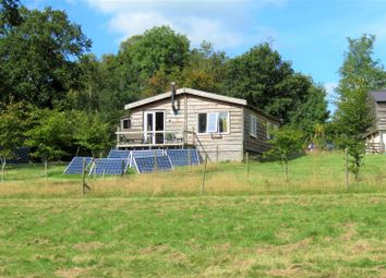 Thumbnail 3 bedroom detached bungalow for sale in Dolton, Winkleigh
