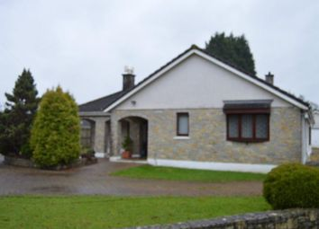 Thumbnail 3 bed bungalow to rent in Llandybie, Ammanford