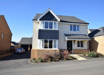 Thumbnail 4 bedroom detached house for sale in Cormorant Close, Bude