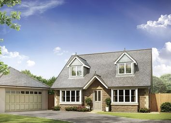 Thumbnail 4 bedroom detached house for sale in Stonecross Meadows, Milnthorpe Road, Kendal