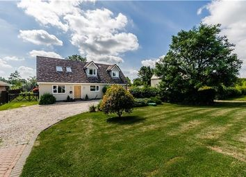Thumbnail 5 bedroom detached house for sale in Straight Furlong, Pymoor, Ely