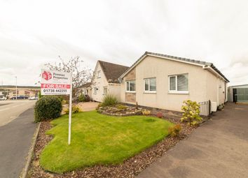 Thumbnail 4 bed bungalow for sale in Juniper Place, Perth