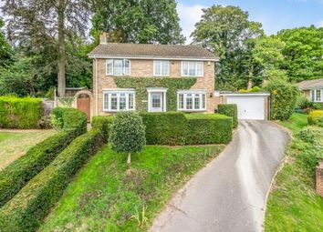 Thumbnail 3 bed detached house for sale in Midhurst, West Sussex, Uk