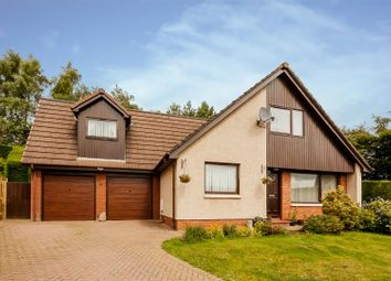 Thumbnail 4 bed detached house for sale in Larch Avenue, Blairgowrie