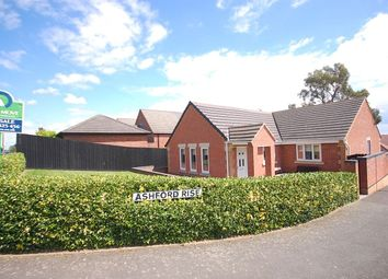 Thumbnail 3 bed bungalow for sale in Ashford Rise, Belper