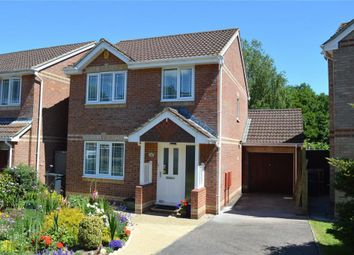 Thumbnail 3 bed detached house for sale in Willow Walk, Honiton, Devon
