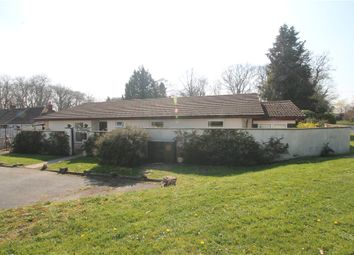 Thumbnail 3 bedroom detached bungalow for sale in Kings Stag, Sturminster Newton, Dorset