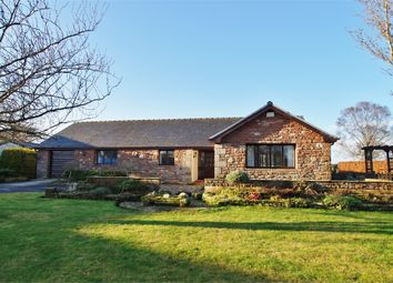Thumbnail 3 bed detached bungalow for sale in Stone Garth, Low Braithwaite, Ivegill, Carlisle, Cumbria