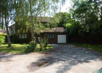 Thumbnail 4 bed detached house to rent in Stockbury Close, Earley, Reading