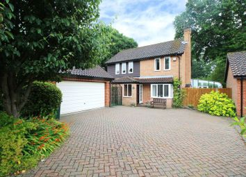 Thumbnail 4 bed detached house for sale in Wolstonbury Close, Crawley