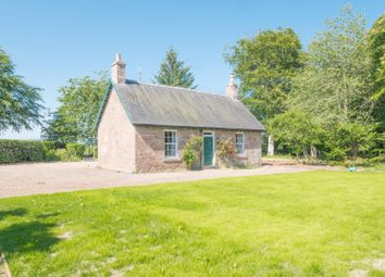 Thumbnail 3 bedroom detached house to rent in Craigo, Montrose