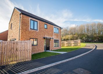 Thumbnail 3 bedroom detached house for sale in The Meadows, Wallsend, Tyne And Wear