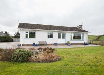 Thumbnail 3 bed detached bungalow for sale in Carryduff Road, Lisburn