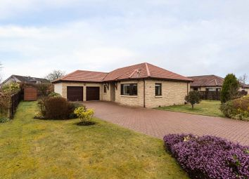 Thumbnail 3 bed bungalow for sale in Mart Lane, Northmuir, Kirriemuir, Angus