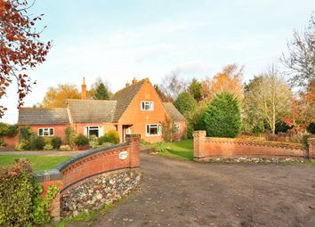 Thumbnail 4 bed detached bungalow for sale in Mill Lane, Ilketshall St. Andrew, Beccles