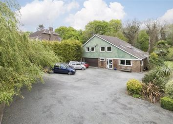 Thumbnail 4 bed detached house for sale in Beauharrow Road, St. Leonards-On-Sea
