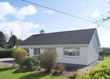Thumbnail 3 bed bungalow for sale in Haggardstown, Mayglass, Wexford