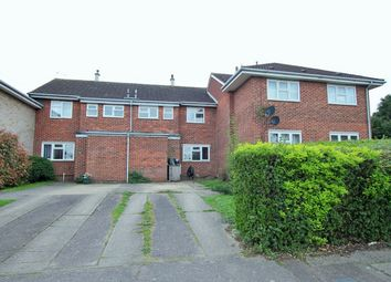 Thumbnail 3 bed detached house for sale in Balfe Court, Colchester, Essex