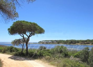 Thumbnail Land for sale in Fonte Santa, Loule, Portugal