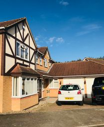 Thumbnail 4 bed detached house to rent in Jasmine Close, Leicester