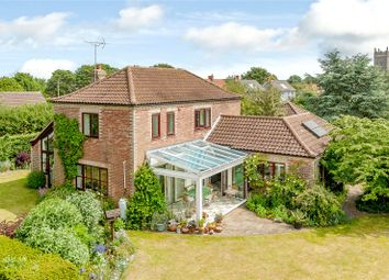 Thumbnail 3 bed detached house for sale in The Street, Walberswick, Southwold, Suffolk