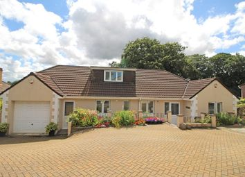 Thumbnail 5 bed bungalow for sale in Kingswood Meadow, Holsworthy