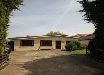 Thumbnail 4 bedroom detached bungalow for sale in Pudsey Hall Lane, Canewdon, Rochford