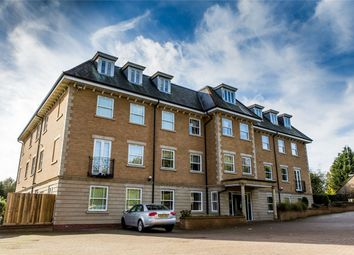 Thumbnail 3 bedroom flat to rent in 119 Thorpe Road, Peterborough, Cambridgeshire
