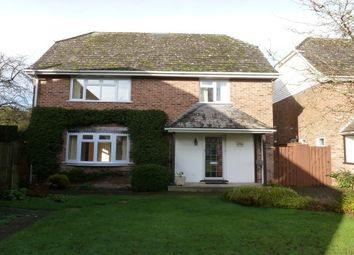 Thumbnail 4 bed detached house to rent in The Harrage, Romsey