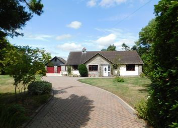 Thumbnail 3 bed detached bungalow for sale in Trinity Hill Road, Axminster