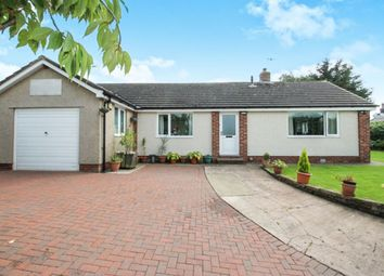 Thumbnail 3 bed bungalow for sale in Low Row, Brampton