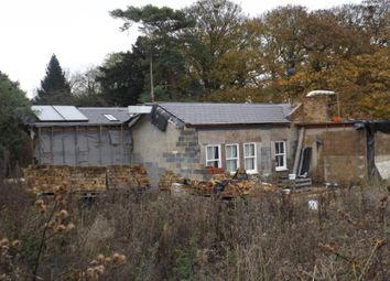 Thumbnail 4 bed detached house for sale in Tilegate Road, High Laver, Ongar, Essex