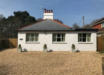 Thumbnail 2 bed detached bungalow to rent in Graffham, Near Petworth, West Sussex
