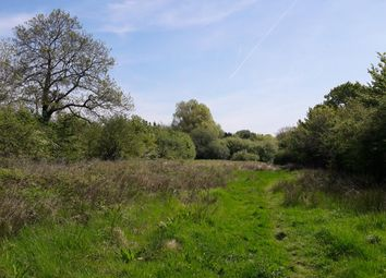 Thumbnail Land for sale in Upper Minety, Malmesbury, Wiltshire