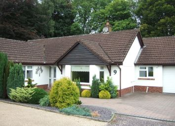 Thumbnail 3 bed detached bungalow to rent in Rookwood Close, Honiton, Devon