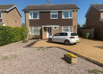 Thumbnail 4 bed property to rent in St Marys Road, Stilton, Peterborough